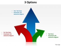 3 Options Powerpoint Slides 2