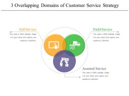 3 Overlapping Domains Of Customer Service Strategy 2 Example Of Ppt