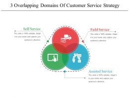 3 Overlapping Domains Of Customer Service Strategy Sample Of Ppt