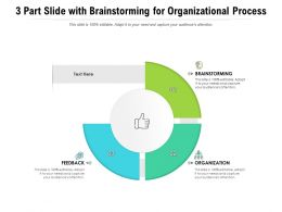 3 Part Slide With Brainstorming For Organizational Process