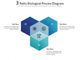 3 Paths Biological Process Diagram Infographic Template