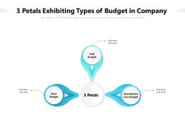3 Petals Exhibiting Types Of Budget In Company