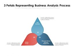 3 Petals Representing Business Analysis Process