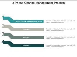 3 Phase Change Management Process Ppt Powerpoint Presentation Inspiration Background Image Cpb
