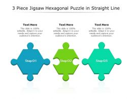 3 Piece Jigsaw Hexagonal Puzzle In Straight Line