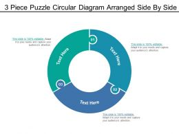 3 Piece Puzzle Circular Diagram Arranged Side By Side
