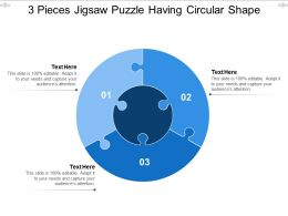 3 Pieces Jigsaw Puzzle Having Circular Shape