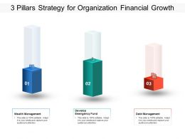 3 Pillars Strategy For Organization Financial Growth