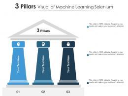 3 Pillars Visual Of Machine Learning Selenium Infographic Template