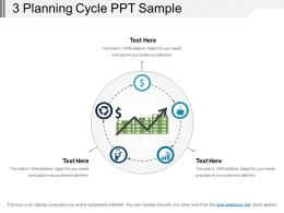 3 Planning Cycle Ppt Sample