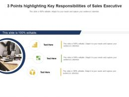 3 Points Highlighting Key Responsibilities Of Sales Executive Infographic Template