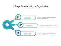3 Stage Financial Vision Of Organization