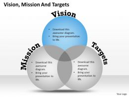 3 Staged Business Vision Venn Diagram 0114