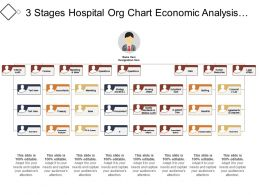 3 Stages Hospital Org Chart Economic Analysis Budgeting And Controlling