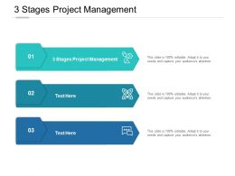 3 Stages Project Management Ppt Powerpoint Presentation Styles Cpb