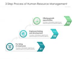 3 Step Process Of Human Resource Management