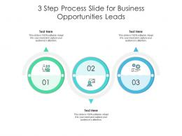 3 Step Process Slide For Business Opportunities Leads Infographic Template