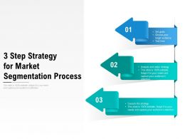 3 Step Strategy For Market Segmentation Process