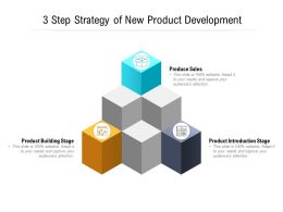 3 Step Strategy Of New Product Development