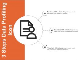 3 Steps Data Profiling Icon