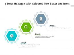 3 Steps Hexagon With Coloured Text Boxes And Icons Infographic Template