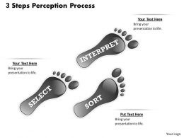 3 Steps Perception Process PowerPoint Template Slide