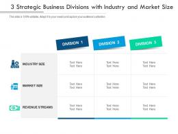 3 Strategic Business Divisions With Industry And Market Size