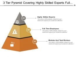 3 Tier Pyramid Covering Highly Skilled Experts Full Time Employees And Modular Workers