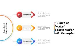 3 Types Of Market Segmentation With Examples
