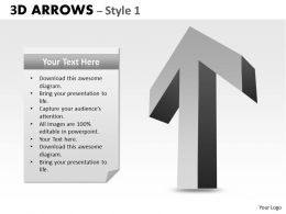 3d Arrows Styli 19
