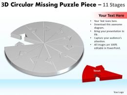 3D Circular Missing Puzzle Piece 11 Stages