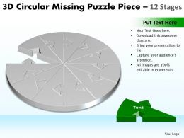 3D Circular Missing Puzzle Piece 12 Stages 2