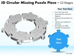 3D Circular Missing Puzzle Piece 12 Stages