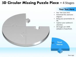 3D Circular Missing Puzzle Piece 4 Stages