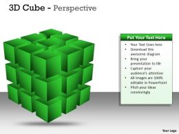 3D Cube diagrame Perspective PPT 4