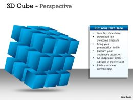 3D Cube Perspective diagram PPT 6