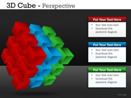 3D Cube Perspective Powerpoint Presentation Slides DB