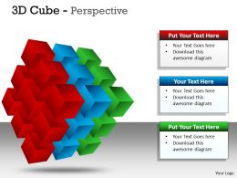 3D Cube Perspective PPT 57