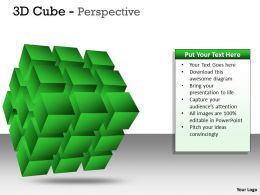 3D Cube Perspective PPT 7