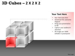 3D Cubes 2x2x2 PPT 65
