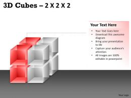 3D Cubes 2x2x2 PPT 69