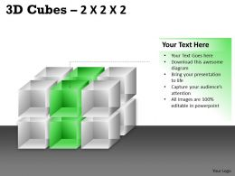 3D Cubes 2x2x3 PPT 79