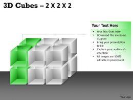 3D Cubes 2x2x3 PPT 80