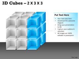 3D Cubes 2x3x3 PPT 91