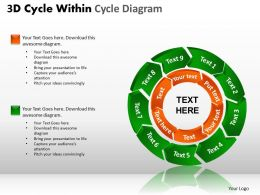 3D Cycle Within Cycle Diagram PPT 1