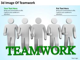 3D Image Of Teamwork Ppt Graphics Icons