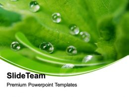 3D Nature Backgrounds Powerpoint Templates Dew Drops On Leaves Beauty Image Ppt Slide