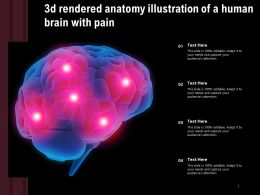 3d Rendered Anatomy Illustration Of A Human Brain With Pain