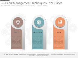 3s Lean Management Techniques Ppt Slides
