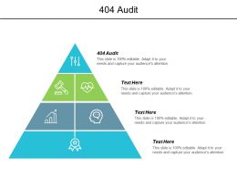 404 Audit Ppt Powerpoint Presentation Gallery Design Ideas Cpb